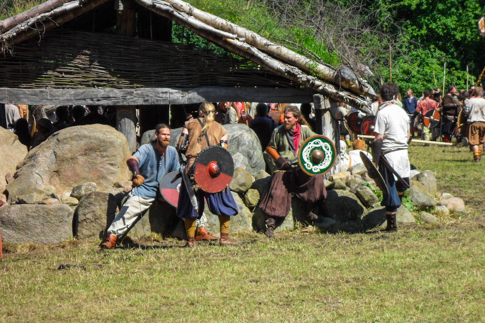 Vikings in Battle in fron of a barn