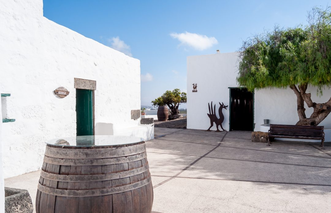 Lanzarote Wine Tasting at Bodegas el Grifo (Spain) || Wanderwings