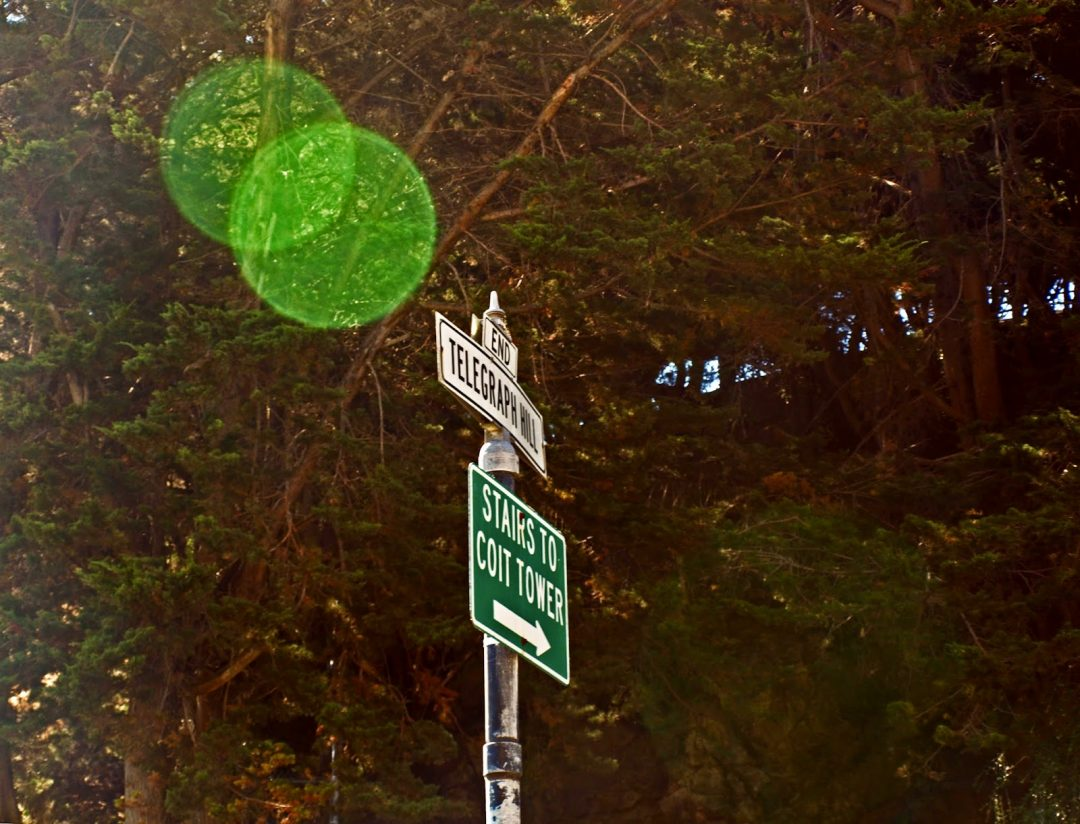 Telegaph Hill (San Francisco) | Wandewrings