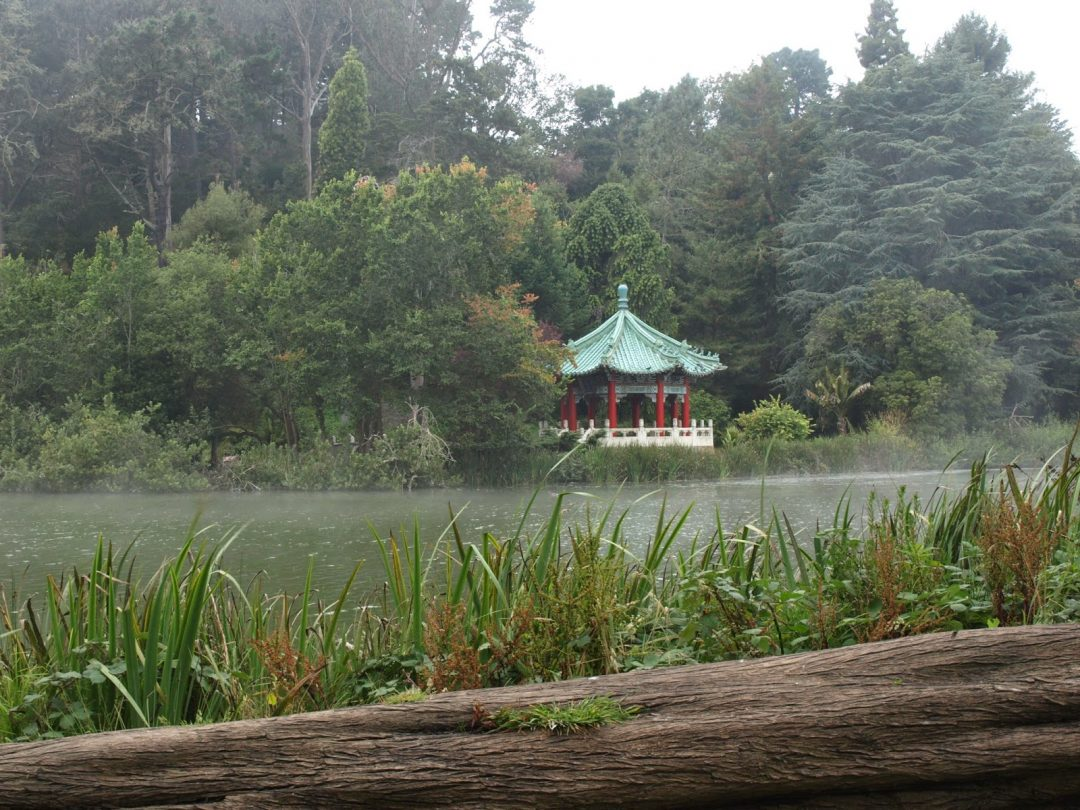 Japanese Garden at the Golden Gate park (San Francisco) | Wanderwings