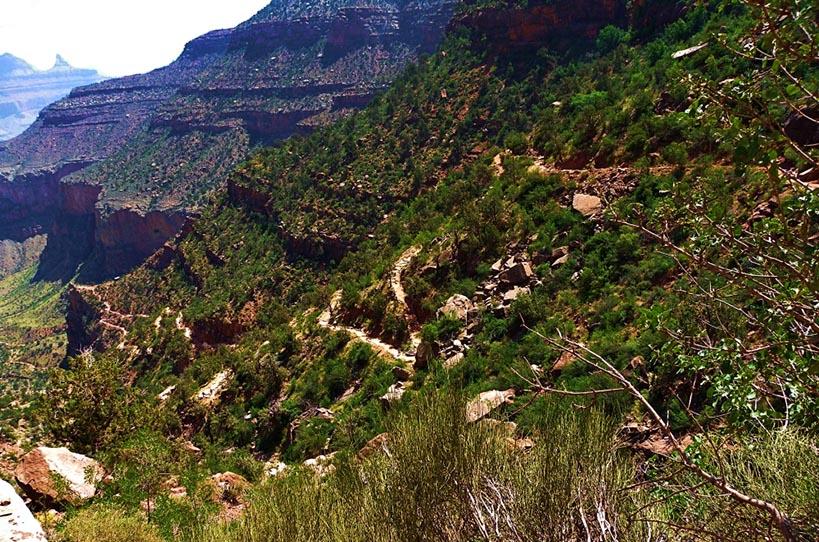 Bright Angel Train, Grand Canyon, Arizona, USA