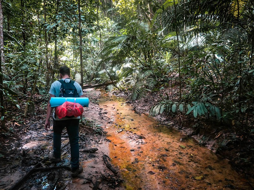 Man carrying a backpack with a blue sleeping mat walking through a jungle
